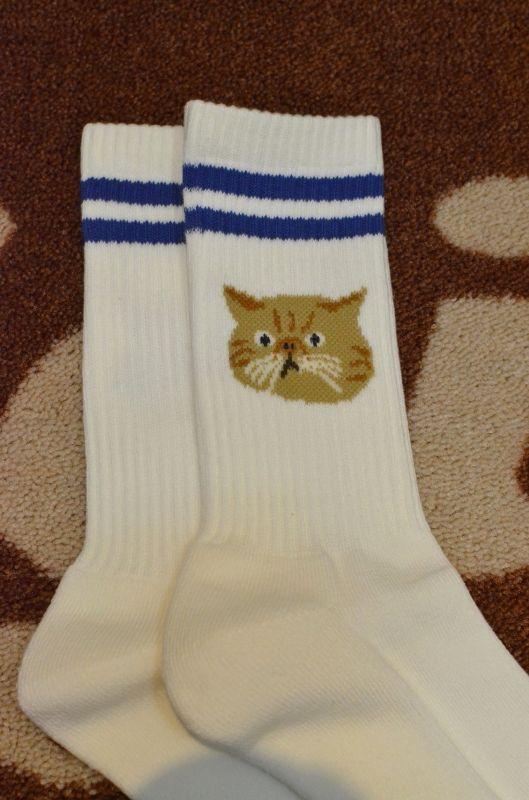 画像1: 【ROSTER SOX/ロスターソックス】 TEAM CAT (1)